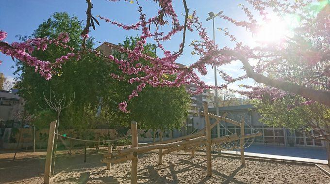 Arriba La Primera Festa De Primavera A La Llacuna