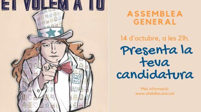 Assemblea General 2020: Link De Connexió I Candidatures Presentades